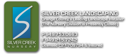 Silver Creek Nursery